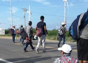 ONG dará refugio a migrantes que pasen por Guerrero 4