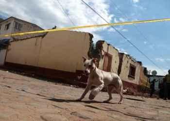 Cuelgan a perrita en cables de luz en Hermosillo 2