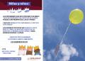Elefante casi se ahoga con globos; Reyes Magos piden no enviarlos 17