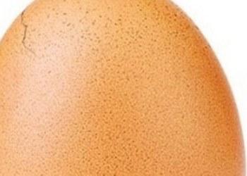 """Huevo casi estalla de tantos likes; suma casi 6 millones de """"me gusta"""" 3"""