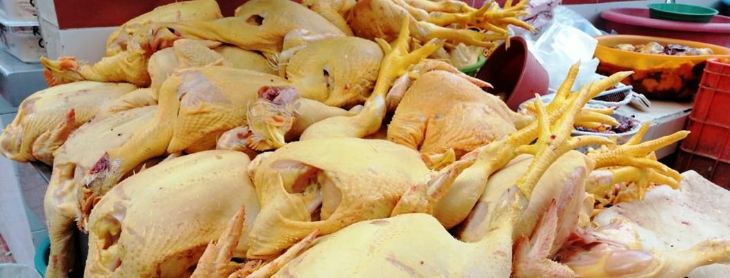 Hong Kong suspende importación de pollo de Guanajuato por gripe aviar