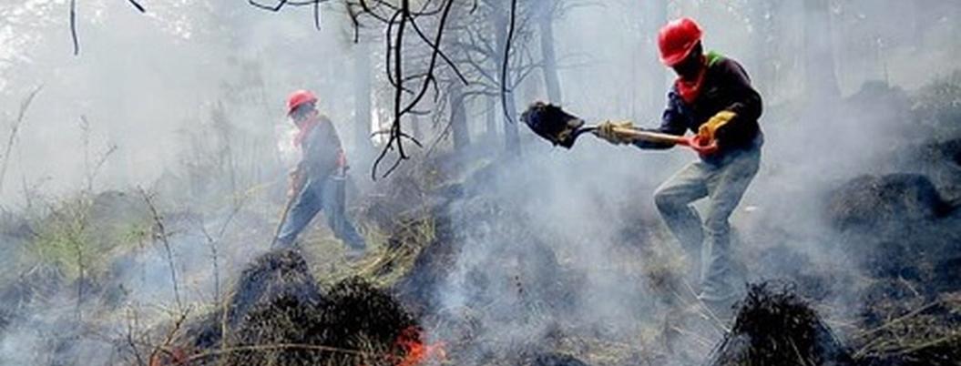 Cuarta Transformación no sabe cómo combatir incendios forestales