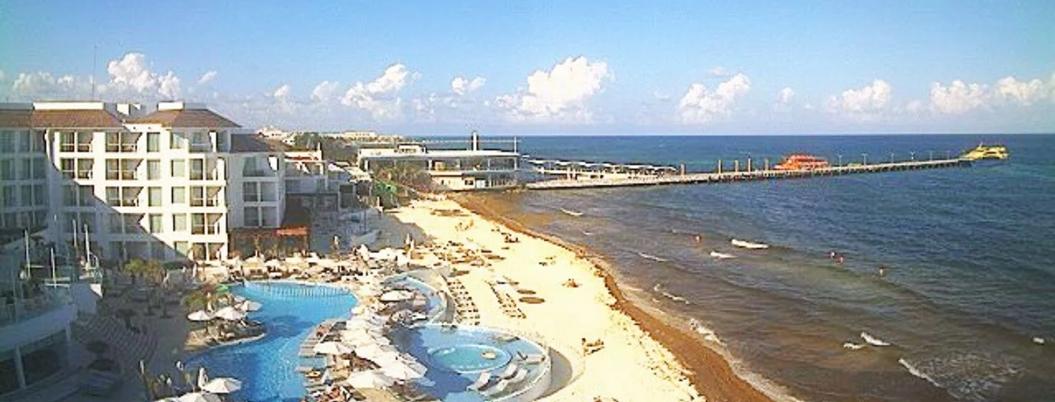 Semar atenderá el sargazo en Quintana Roo