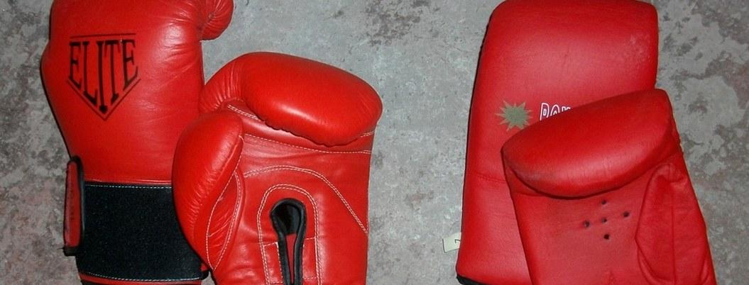 Selección mexicana de boxeo inicia con siete triunfos en Ecuador