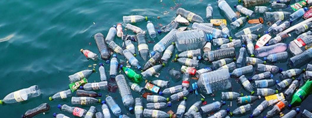 Plástico forma parte de la dieta humana; consumimos 5 gramos por semana