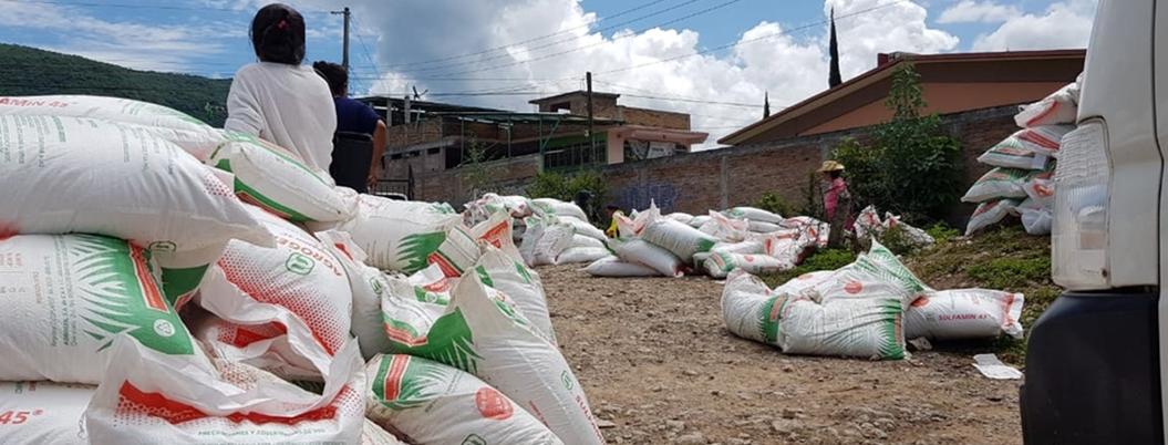 Organizaciones partidistas desatan pillaje de fertilizante en Guerrero