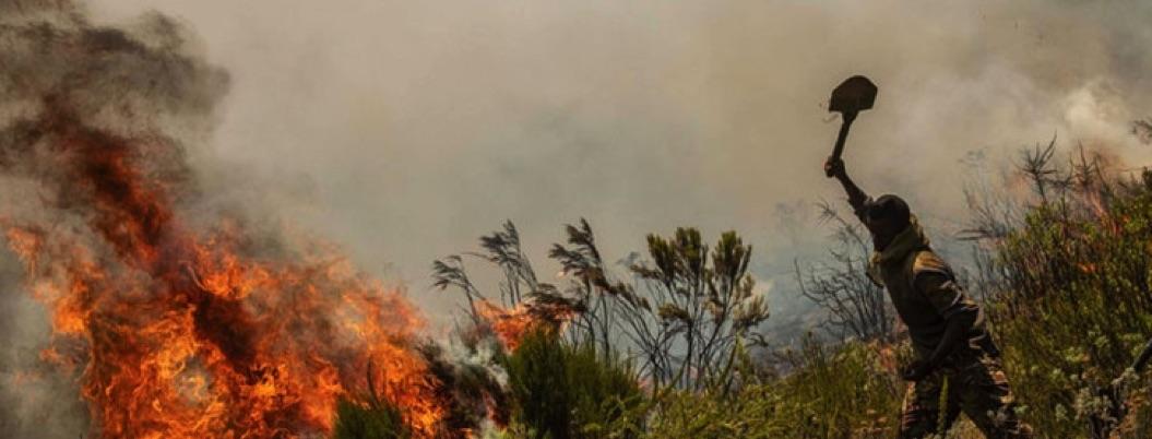 Incendios en África, mucho más numerosos que los de la Amazonía