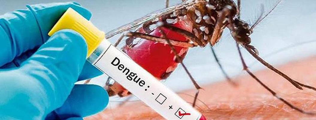 Yucatán, el estado con menos casos de dengue