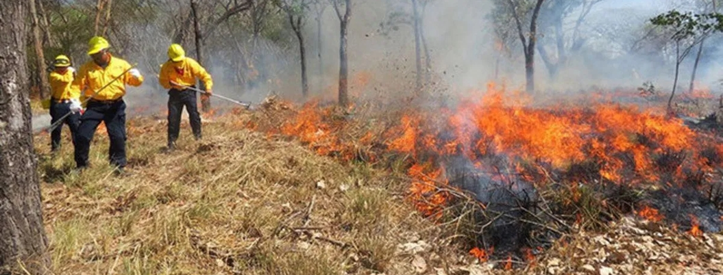 Tabasco entre llamas: surgen 27 incendios en sólo una semana