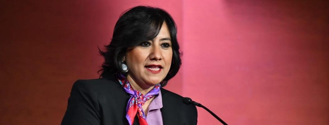 Irma Eréndira ciudadaniza la persecución contra los corruptos