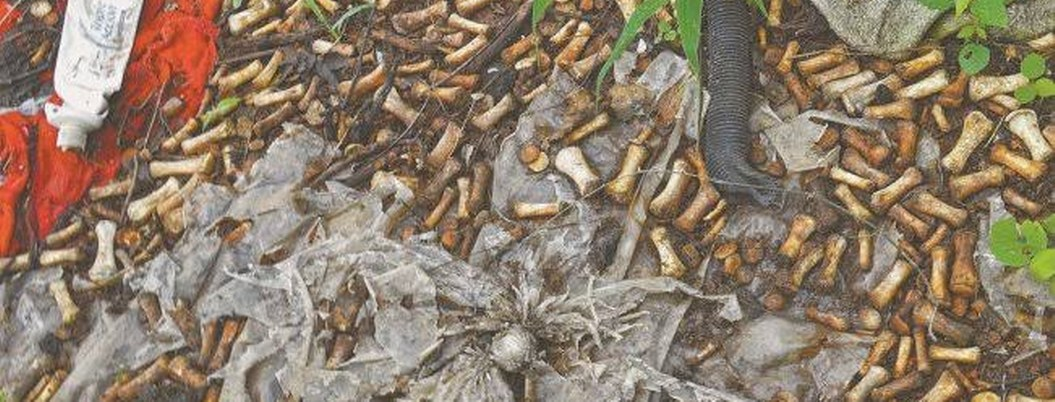 Macabro hallazgo en Sinaloa: 2 mil fragmentos de huesos de manos