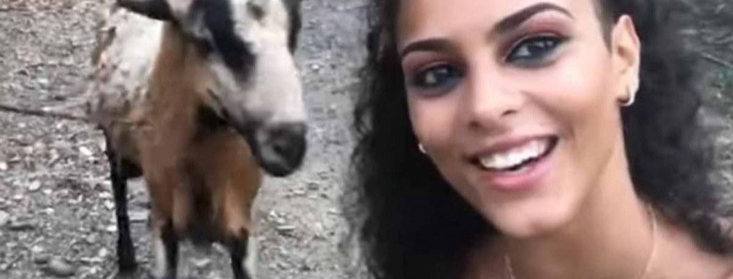 Joven quería una selfie con una cabra y se gana tremendo golpe