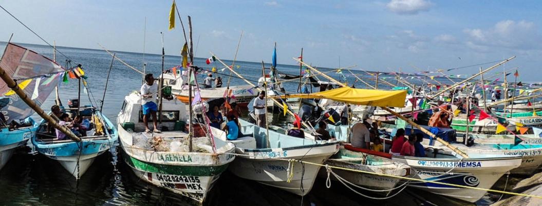 Cuarta Transformación abandona a su suerte a pequeños pescadores