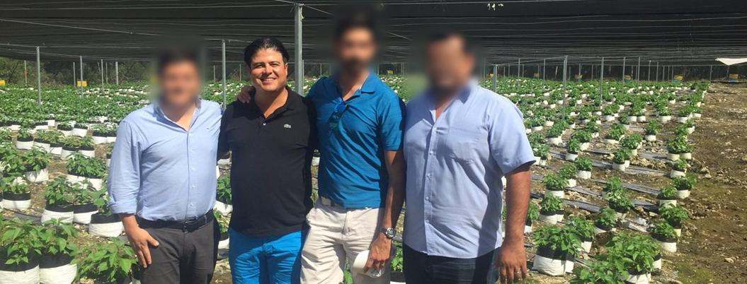 Criminal quería fundar imperio de marihuana con criptomonedas en México