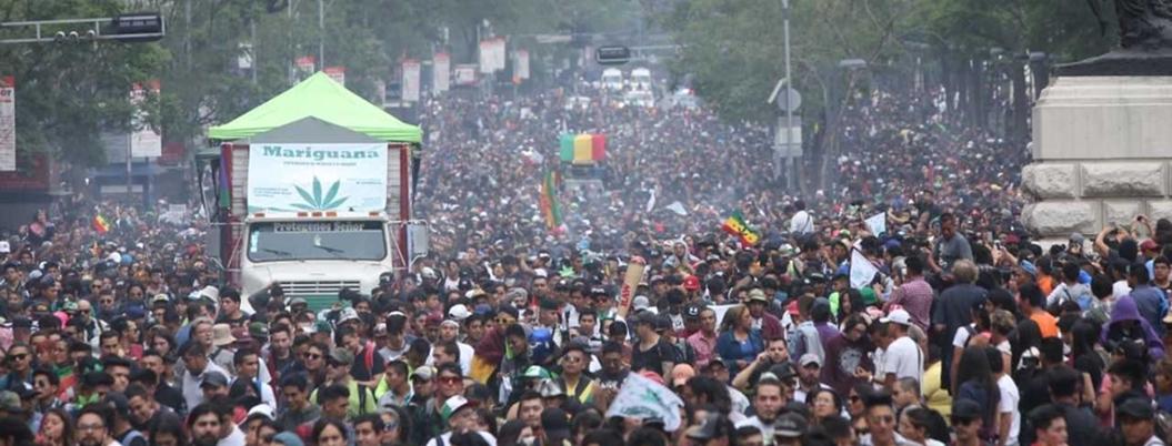 Hacienda estima que ingresarían 18 mil mdp con legalización de la marihuana