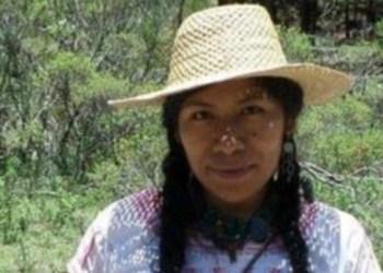 Desaparece la ambientalista Irma Galindo en Oaxaca 8