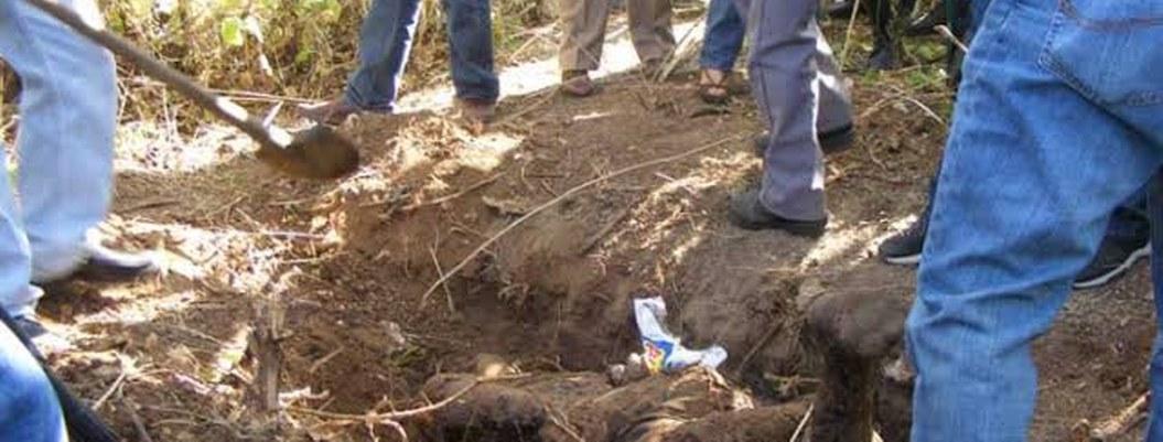 Hallan 31 cadáveres en fosas clandestinas en Guadalajara