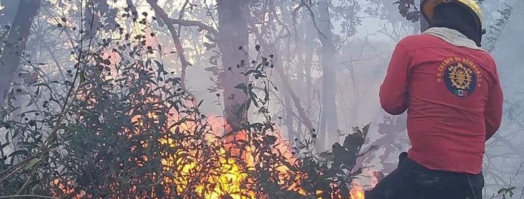 Reportan los primeros incendios forestales en Guerrero