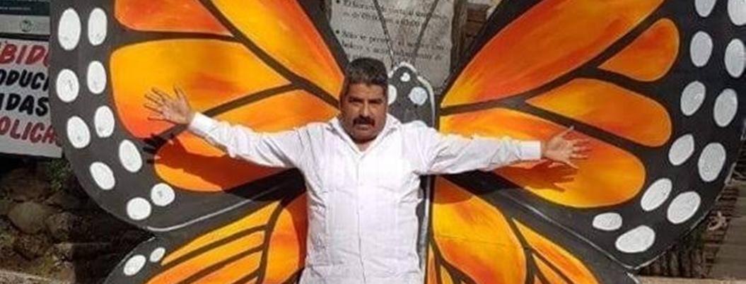 Andrés Manuel lamenta asesinato de protector de mariposa monarca
