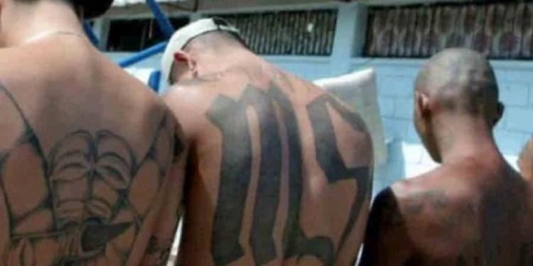 Policía de Chiapas detiene a 4 maras salvatrucha