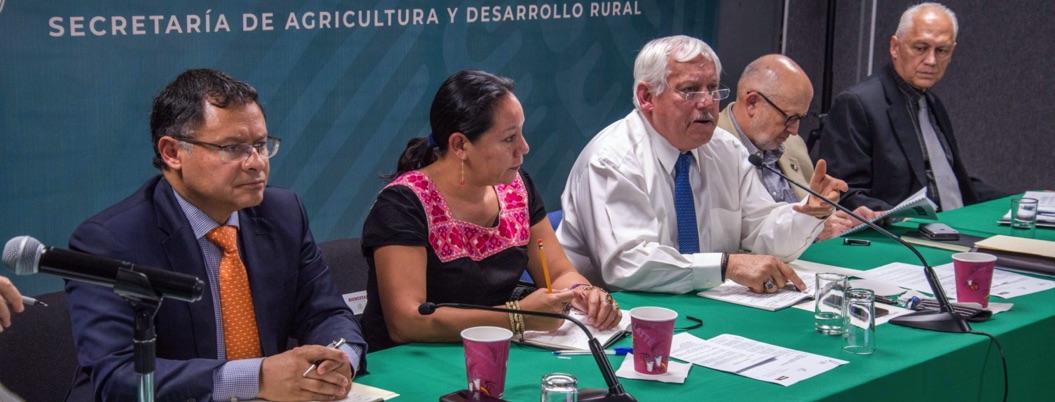 Gobierno federal va por el recate del sector caficultor en México
