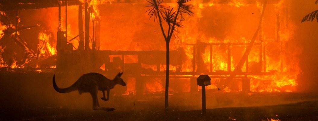 Australia por fin contiene terribles incendios que mataron a 25