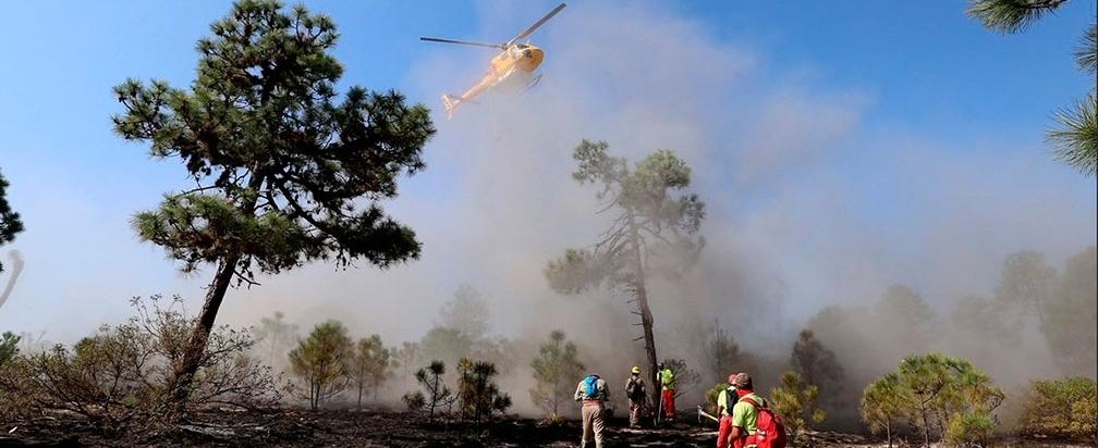 Incendio forestal consume 20 hectáreas en Nuevo León