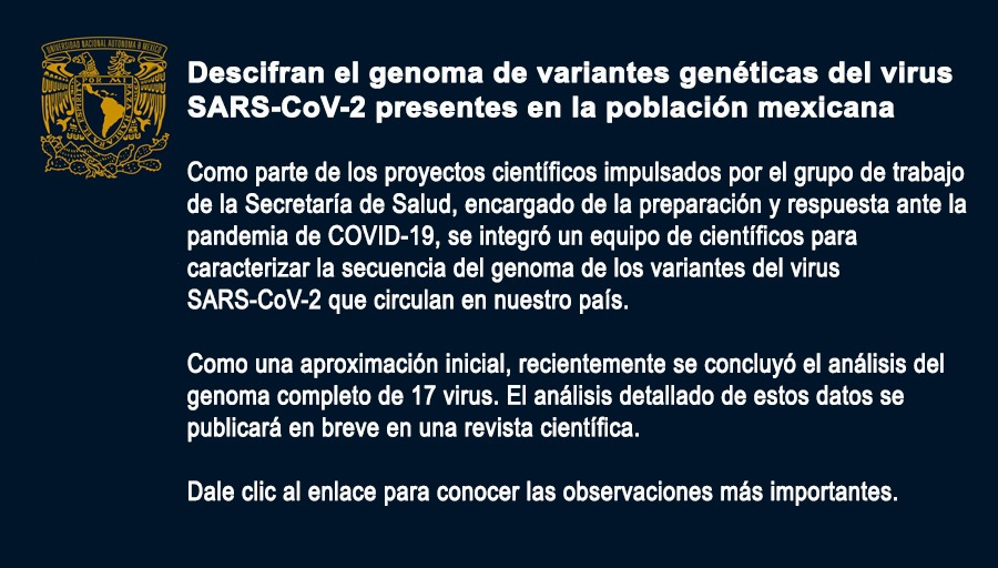 Científicos mexicanos descubren dos variantes del Covid-19 en el país 1