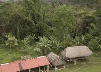 Detienen a presunta secta que retenía niños en Panamá 1