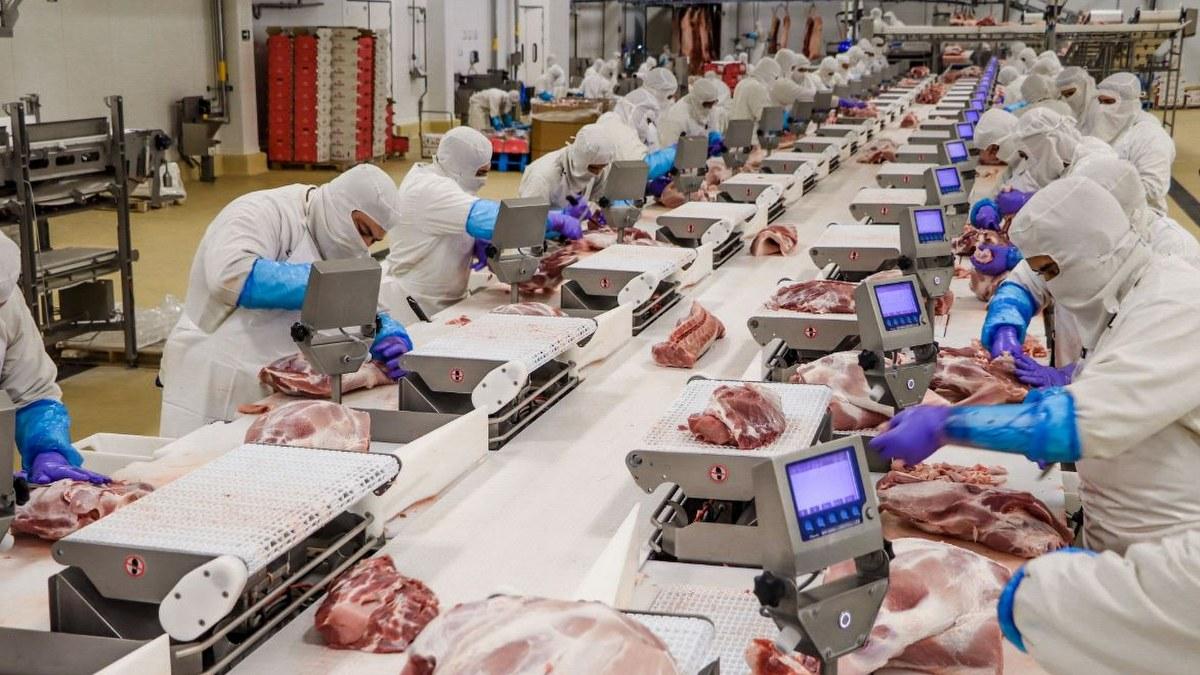 Superávit agroalimentario rebasa los 11 mil 400 millones de dólares 1