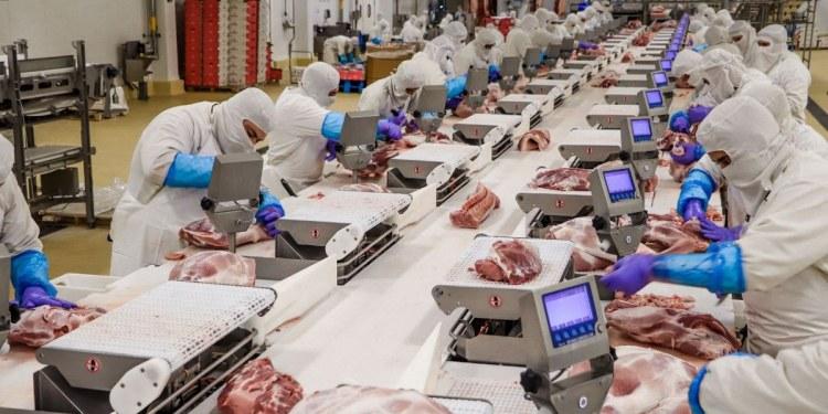 De enero a junio van 401 mil empleos generados, informa el IMSS 1