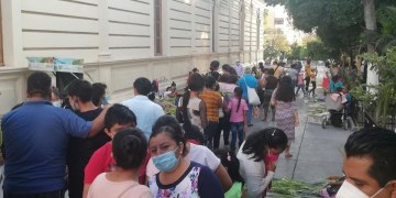 Sin sana distancia, católicos acuden al Domingo de Ramos en Chilpancingo 6