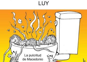 ¡Viva su pulcritud! | Luy 15