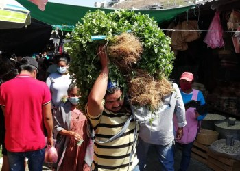 casos Covid en Guerrero