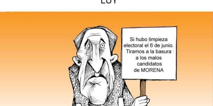 Limpieza electoral | Luy 5