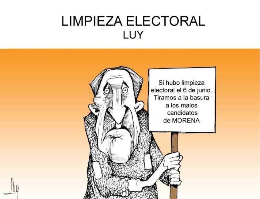 Limpieza electoral | Luy 6