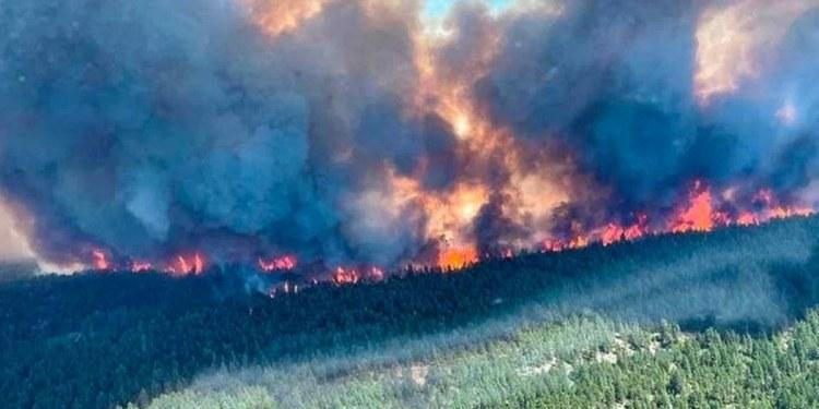 Incendio en EU habría sido provocado por empresa eléctrica 1
