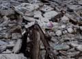 Colapsa pared del Distribuidor Chichihualco; Astudillo se deslinda de la obra de 135 mdp 2