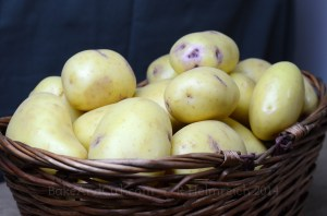 Spuds in a basket
