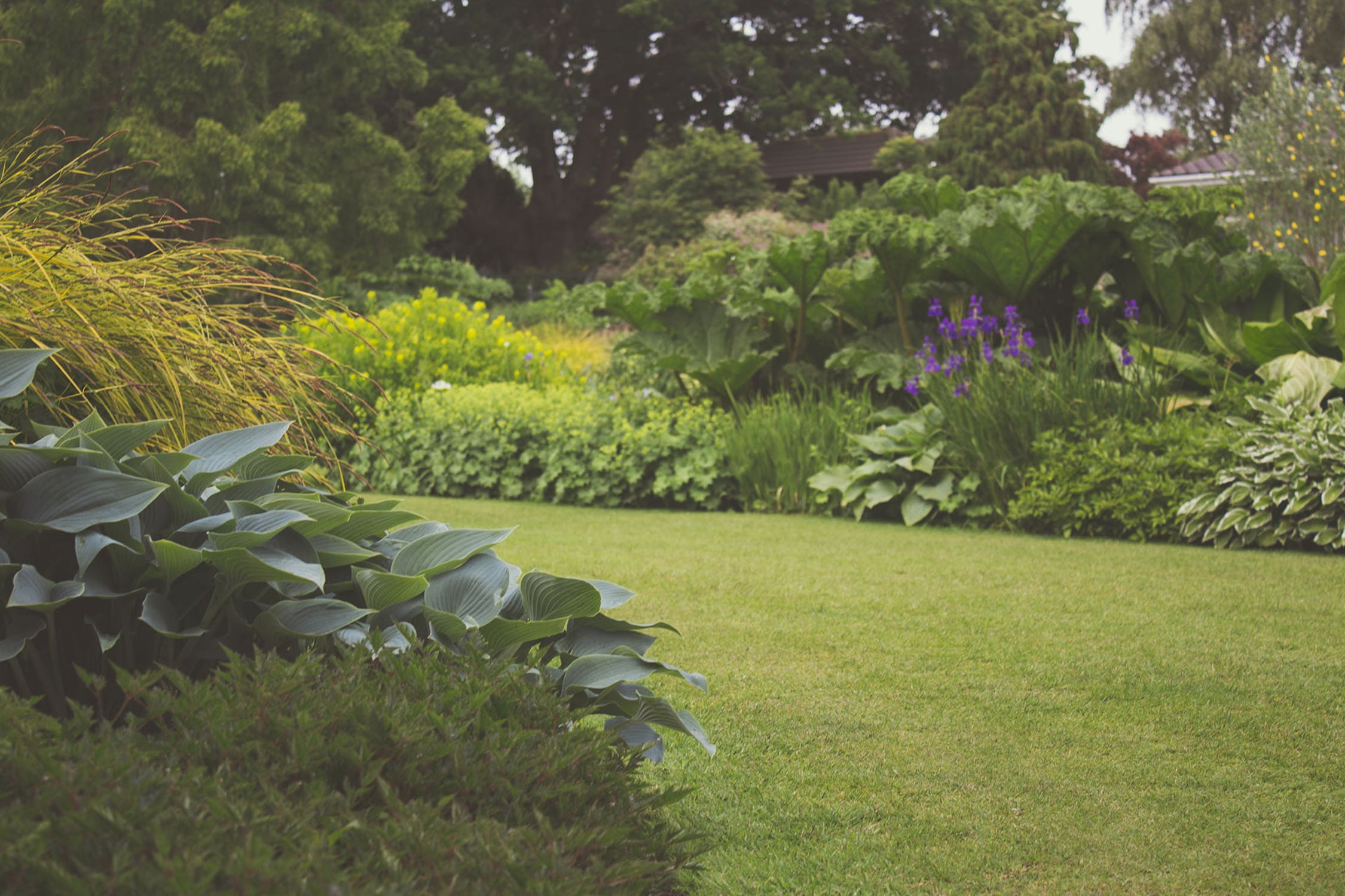 Are Any Problems Hiding In Your Garden?