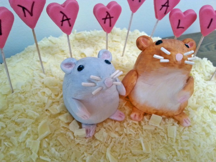 Hamster_kake_sjokoladekake_bakemagi