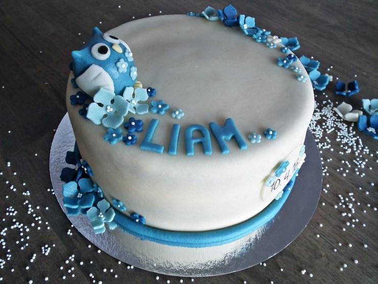 dåpskake_kake_dåp_ugle_uglekake_sjokoladekake_bakemagi_2