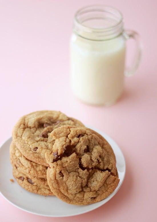Chocolate Chip Cookie Science- Baker Bettie
