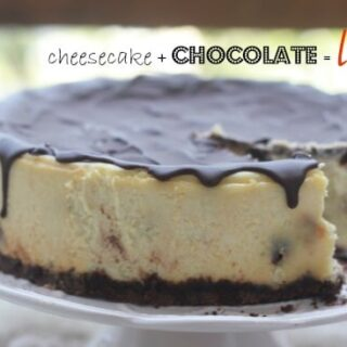 Chocolate Chip Cheesecake on a cake stand