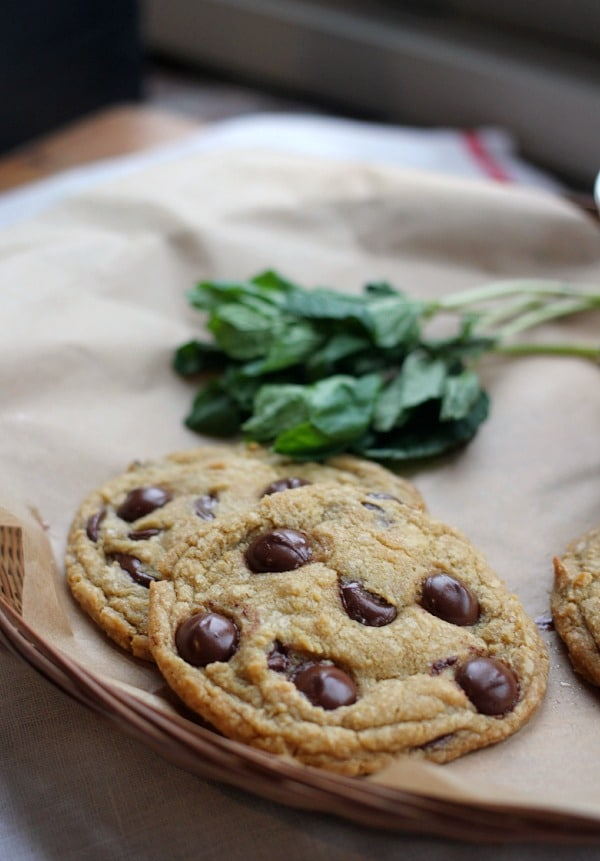 Fresh Mint Chocolate Chip Cookies beside a mint sprig
