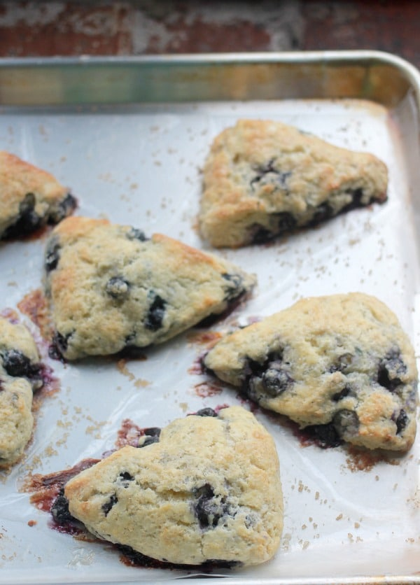 How to Make Scones, Bakery Style Blueberry Scones- Baker Bettie