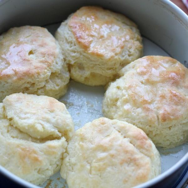 buttermilk-biscuit-recipe-2