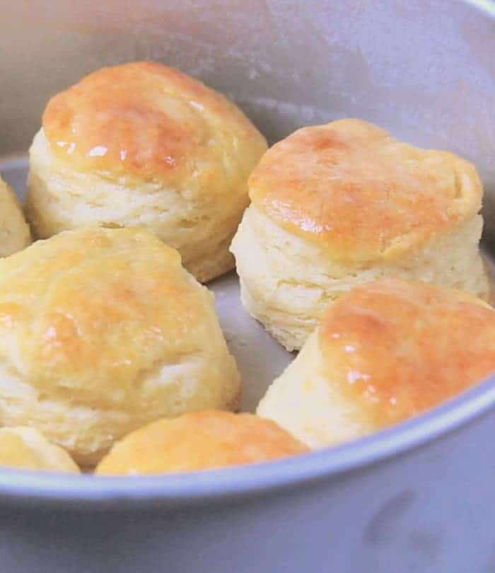 Fluffy homemade buttermilk biscuits after baking in a pan with tall sides