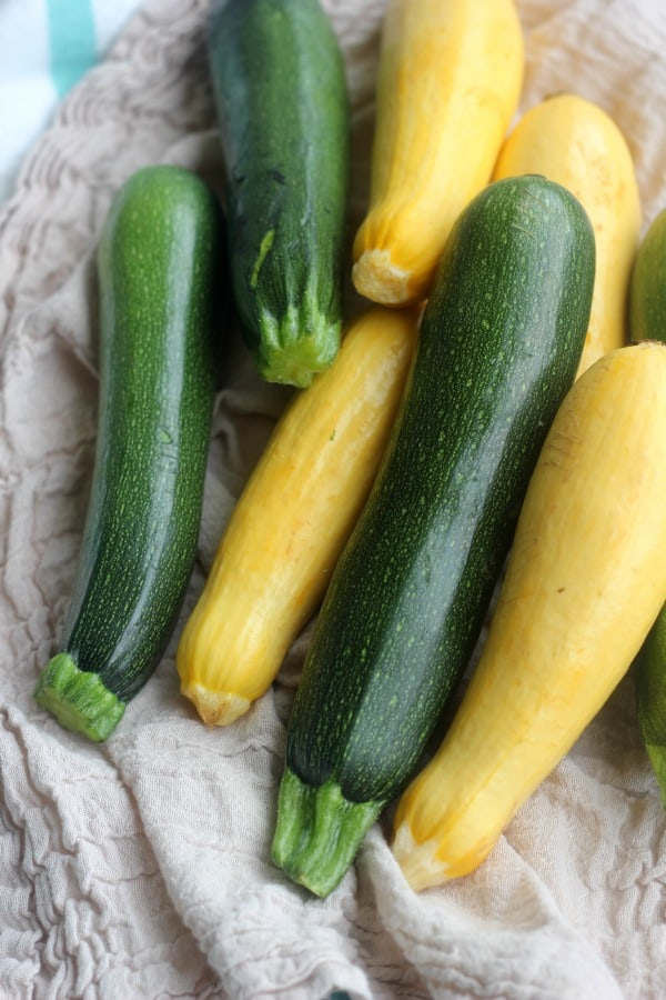 Fresh green and yellow squash