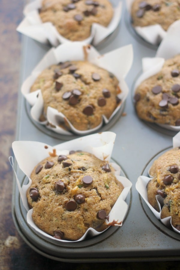 Whole wheat summer squash chocolate chip muffins fresh out of the oven